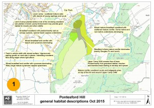 Tree survey and general habitat assessment October 2015