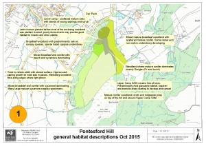 Tree survey and general habitat assessment October 2015