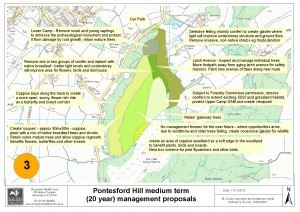The future development plans for Pontesford Hill